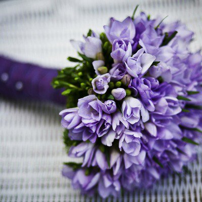 Bloemen Driesen